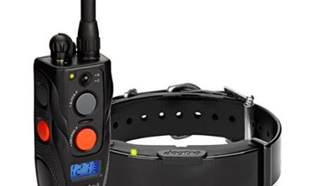 Dogtra Arc Collar: Review & Features