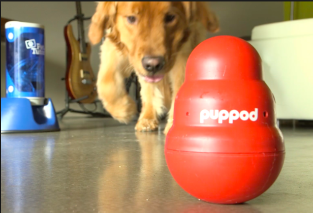 PupPod Review – Smart Dog Toy