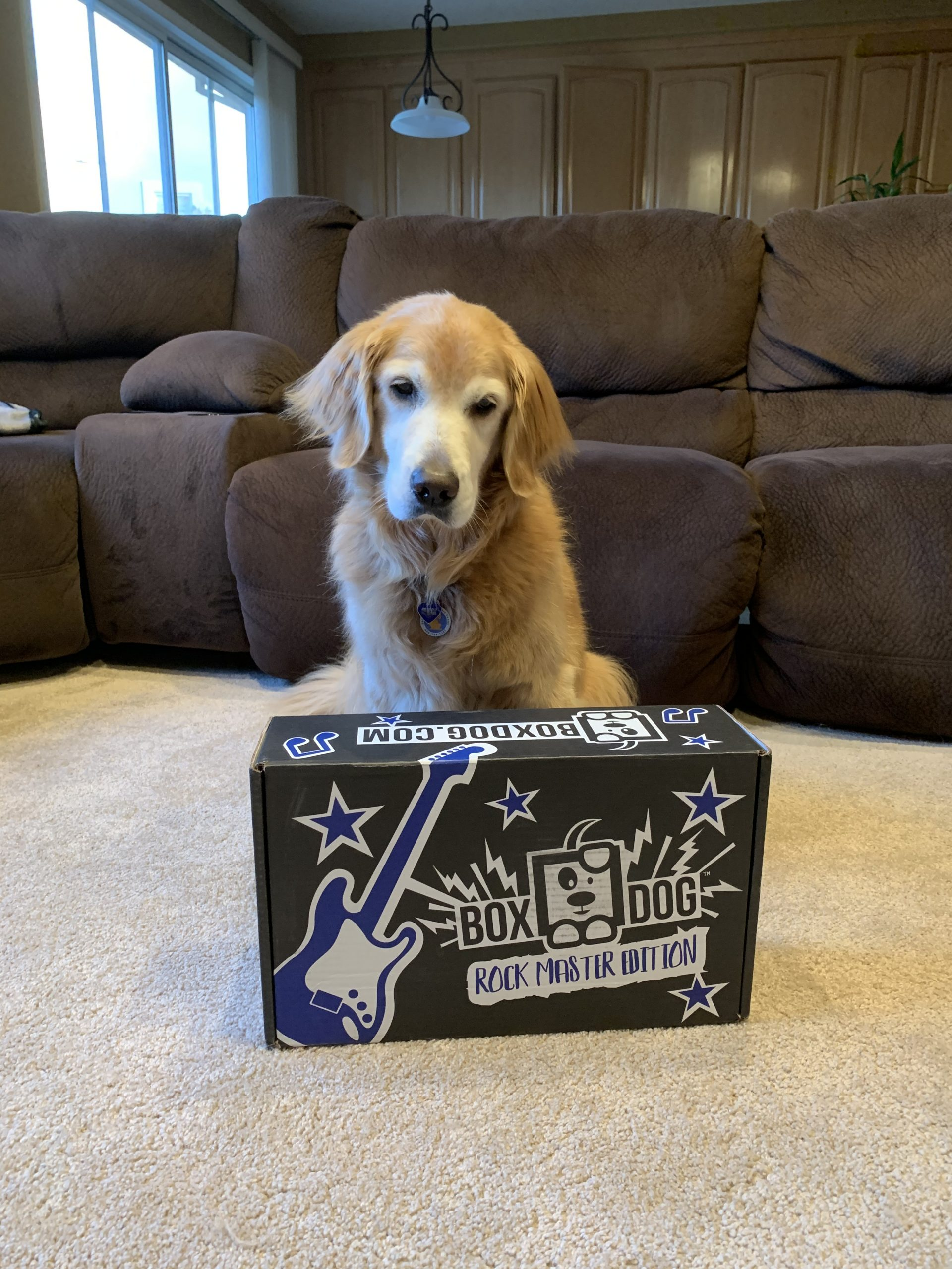 BoxDog Coupon Code